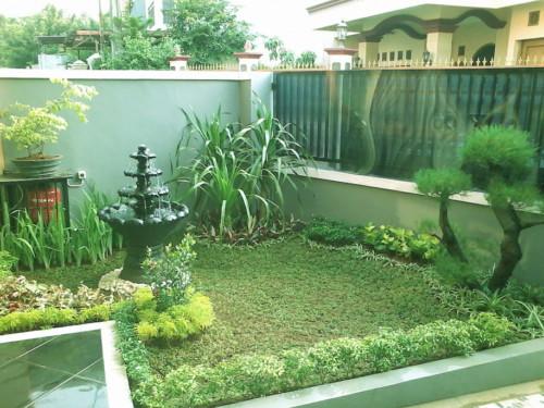 Taman rumah di lahan sempit